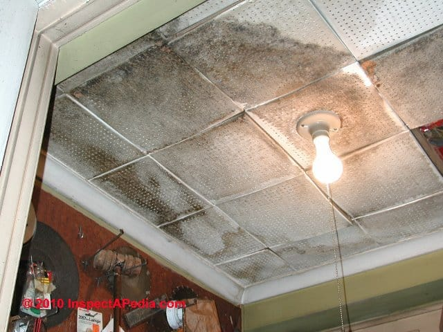 Ceiling_Tile_Asbestos_022_DJFs